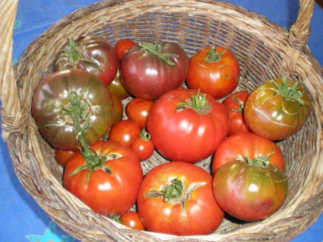 purin de feuilles de tomate. Black Bedroom Furniture Sets. Home Design Ideas